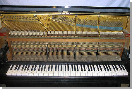bechstein-piano-2.jpg - 21069 Bytes