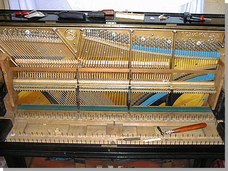 bechstein-piano-5.jpg - 27479 Bytes