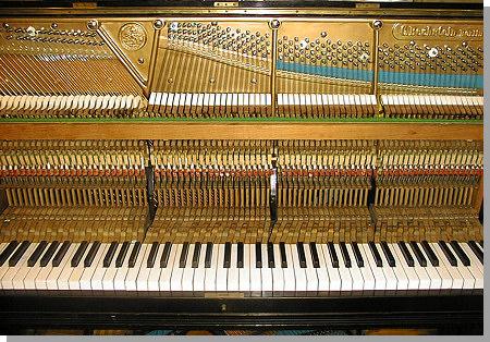 bechstein-piano-9.jpg - 28685 Bytes
