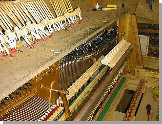 danemann-piano-3.jpg - 5833 Bytes
